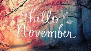 November Training